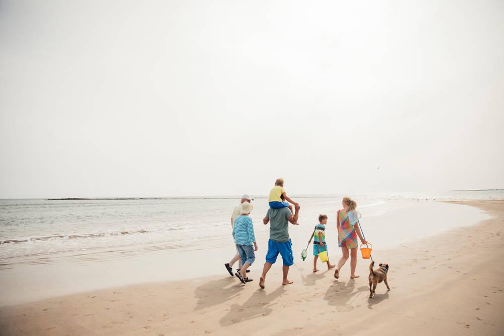 Ir con tu mascota de vacaciones es posible y recomendable