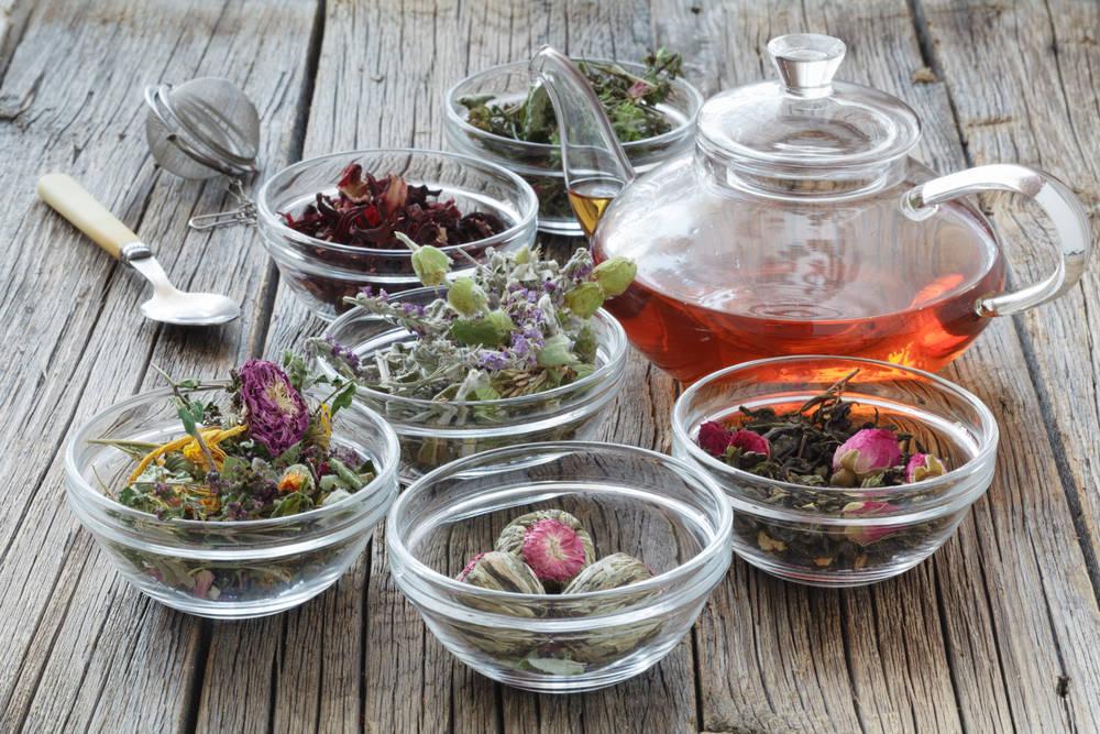 Descubre el control del sobrepeso a través de las plantas medicinales